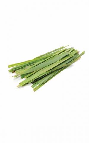 Эфирное масло Лемонграсса doTERRA (пробник) | doTERRA  Lemongrass essential oil sample